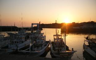 日高の釣り・渡船のご紹介